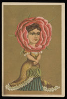 Young woman framed by pink rose