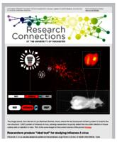 Research Connections (February 20, 2015)
