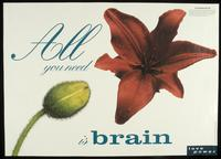 All you need is brain